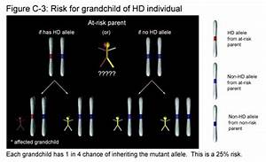 The Inheritance of Huntington's Disease (Text and Audio ...