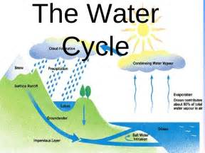 What Is Water Cycle