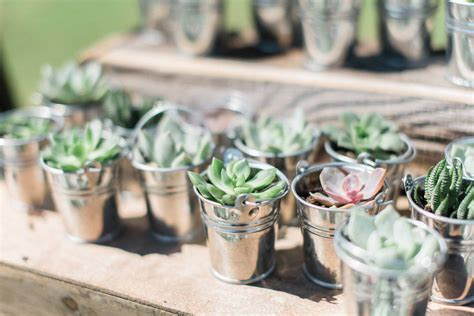 New Wedding Trend Succulent Wedding Favors