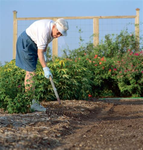 how to become a master gardener applications being accepted for 61st bexar county master