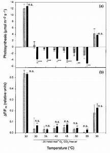 Response Of  A  Photosynthesis And  B  Quantum Yield Of