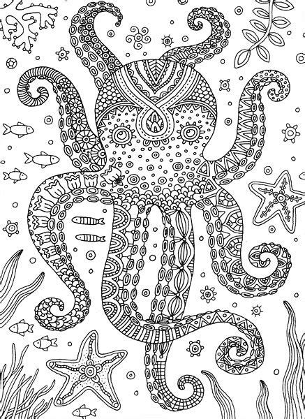 octopus colorful meditations coloring book  stephanie