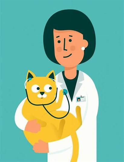 Wellhaven Health Pet Veterinarian Downtown Pets Hero