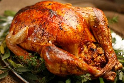 recipe for thanksgiving oven roasted turkey sara snow
