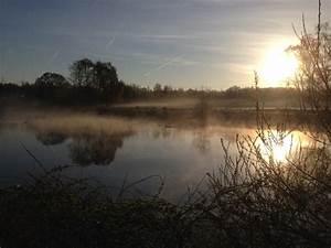 Free, Images, Landscape, Tree, Nature, Marsh, Cloud, Fog, Sunrise, Sunset, Sunlight, Lake, Dawn