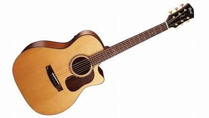 Guitarra Cort Transparent Guitar A6 Gold Acoustic