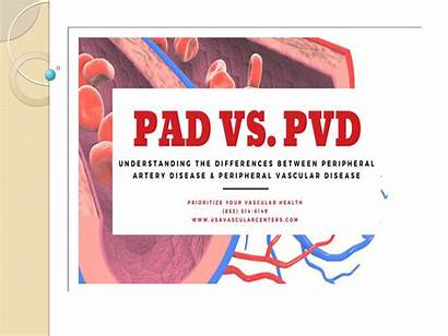 Pvd Pad Difference Risk Factors Vascular Factor