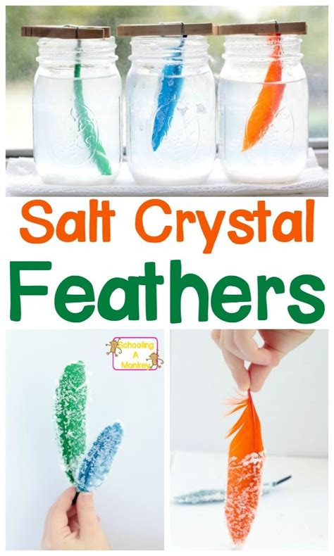 simple science projects how to make salt feathers 610 | Simple Science Projects pin 2