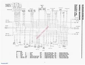 Diagram  Cub Cadet Rzt Wiring Diagram Schematic Full