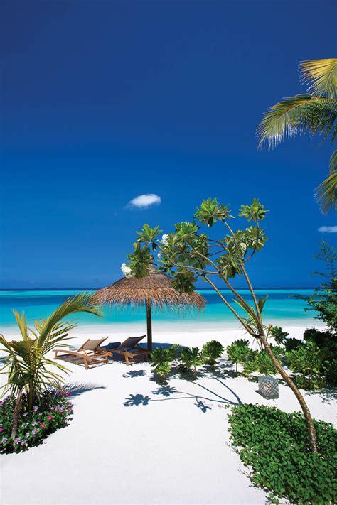 ozen  atmosphere neoscapes maldives