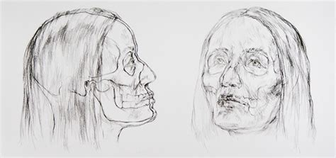 Facial Recontsruction Drawings Behance