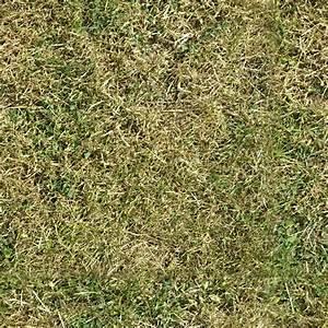 3 seamless grass textures   OpenGameArt.org