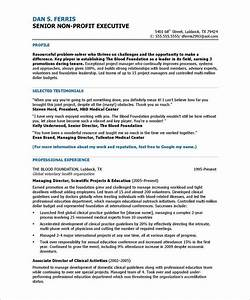 18 best non profit resume samples images on pinterest for Non profit program director resume sample