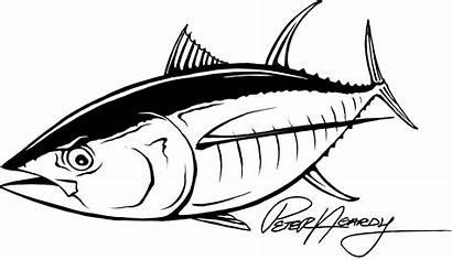 Tuna Fish Stickers Fishing Drawings Vinyl Yellowfin