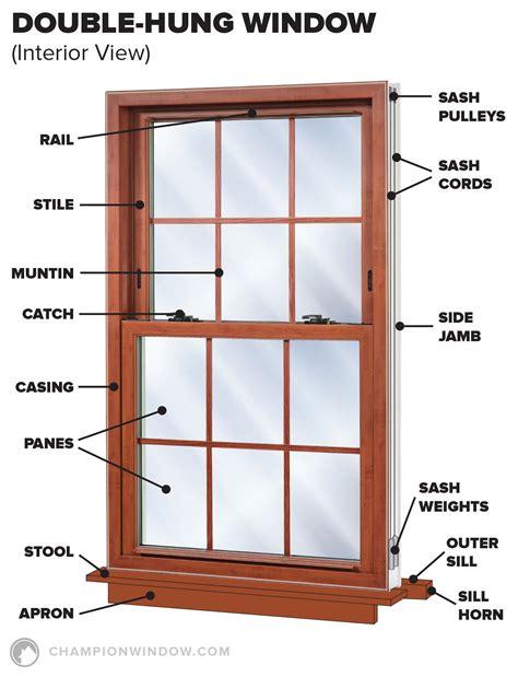 anatomy window