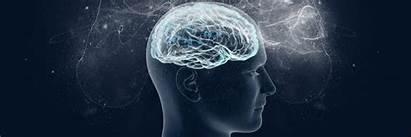 Neuroscience Psychology Ux Awesome Methods Observation Toptal