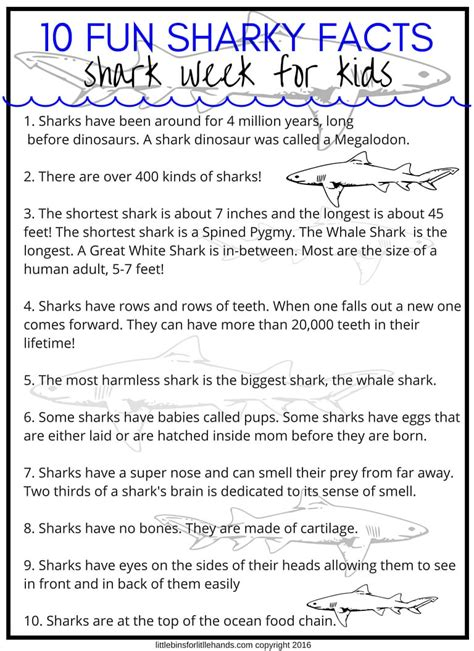 shark week activities  stem projects  kids