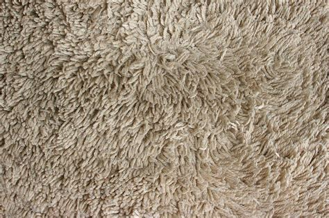 An Overview Of Carpet Types—fiber And Pile