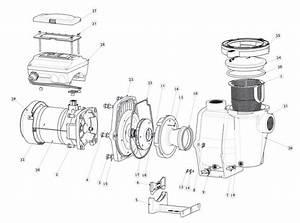 Pentair 011018 Intelliflo Vs Pump 3hp 230v   Wholesale