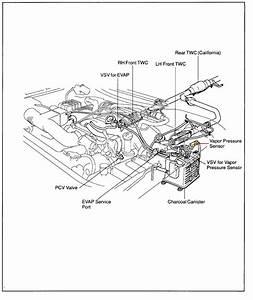 2003 Toyotum Tacoma Evap System Diagram