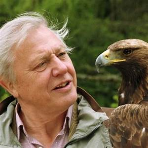 10 Facts about David Attenborough - Fact File