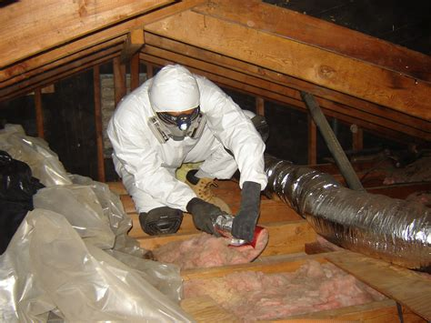 exceptional attic insulation removal  asbestos attic