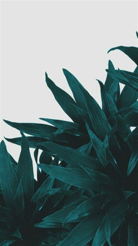 Aesthetic Olive Green Wallpaper Iphone by Olive Green Floral Iphone Wallpapers Top Free Olive
