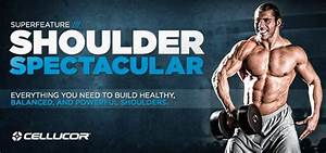 Shoulder Spectacular  Your Complete Guide To Well