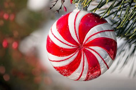 peppermint ornament pictures   images