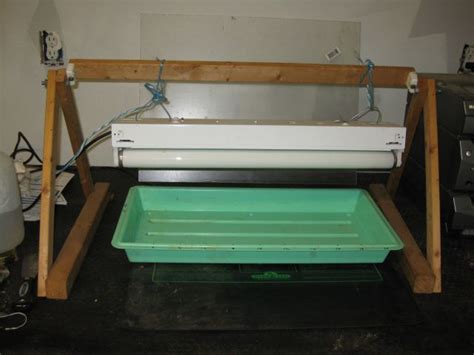 chauffage chambre de culture la température pour la graines de