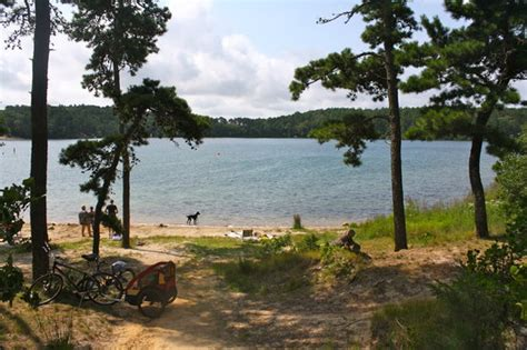 Nickerson State Park Campgrounds (brewster, Ma  Cape Cod