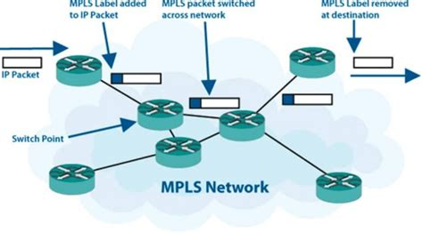 mpls mushroom networks