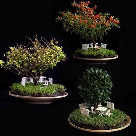 miniature gardens for bonsai trees trusper