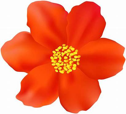 Flower Clipart Flowers Yopriceville Transparent Clipground Previous