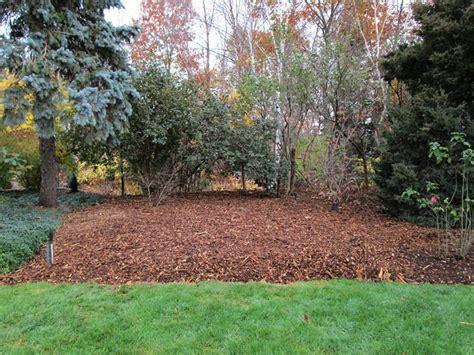 quiet cornerpreparing  vegetable garden  fall