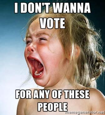 Voting Memes - notes on the presidential debate some unsolicited advice which may or may not include a snap