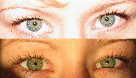 eye colour psychology wiki fandom powered  wikia