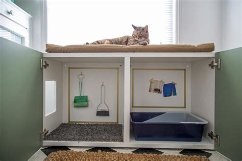 how to build a cabinet box how to conceal a kitty litter box inside a cabinet how