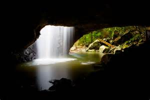 Glow Worm Cave Gold Coast Queensland Australia
