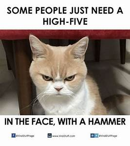 25+ Best Memes About Some People Just Need a High Five ...