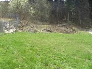 Löcher Im Rasen Ausbessern :  ~ Lizthompson.info Haus und Dekorationen