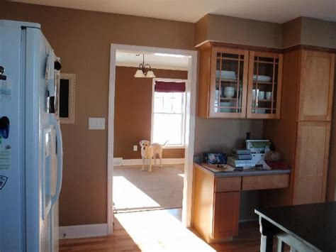 kitchen benjamin moore spice gold