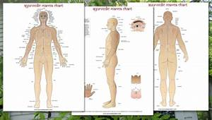Marma Charts And Posters Ayurveda Posters