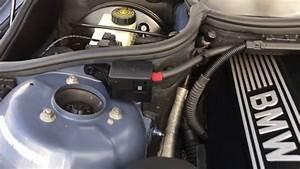 2000 Bmw 323 323i Manual E46 2 5 Engine Video Review