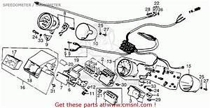 Honda Vt700 Wiring Diagram 41354 Ciboperlamenteblog It