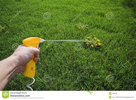 Spray Weed Killer Stock Image Image Of Lawn, Spray
