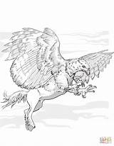 Coloring Hippogriff Griffin Dnd Centaur Printable Griffon Fantasy Dragons Dungeons Drawing Dd Drawings sketch template