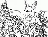 Coloring Pages Spring Springtime Popular sketch template