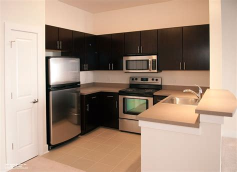 apartment kitchen design ideas stylish small apartment kitchen design that your