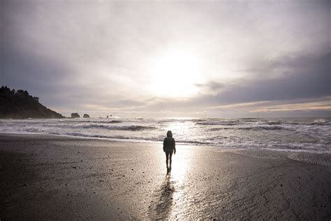 pacific beach washington  complete guide